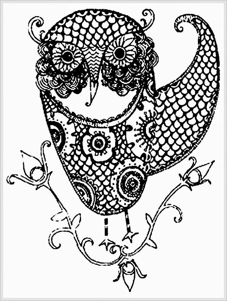 coloring pages for adults owls 10 difficult owl coloring page for adults adults pages coloring owls for
