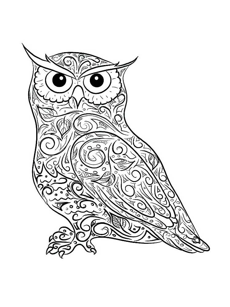 coloring pages for adults owls free owl coloring pages for adults printable to download adults pages coloring owls for