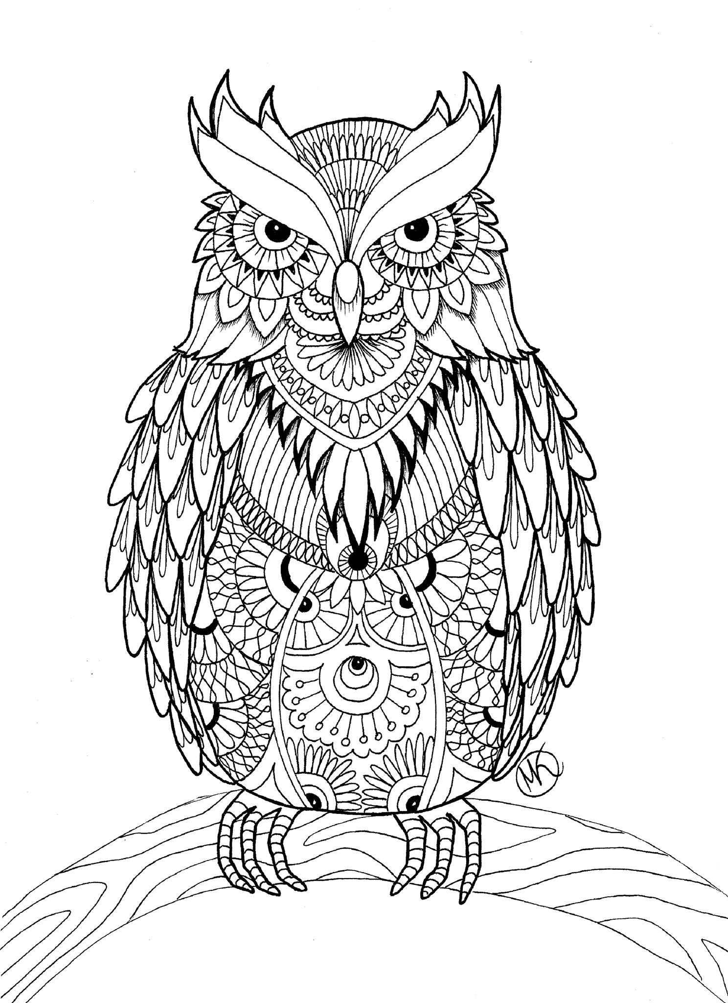 Coloring pages for adults owls