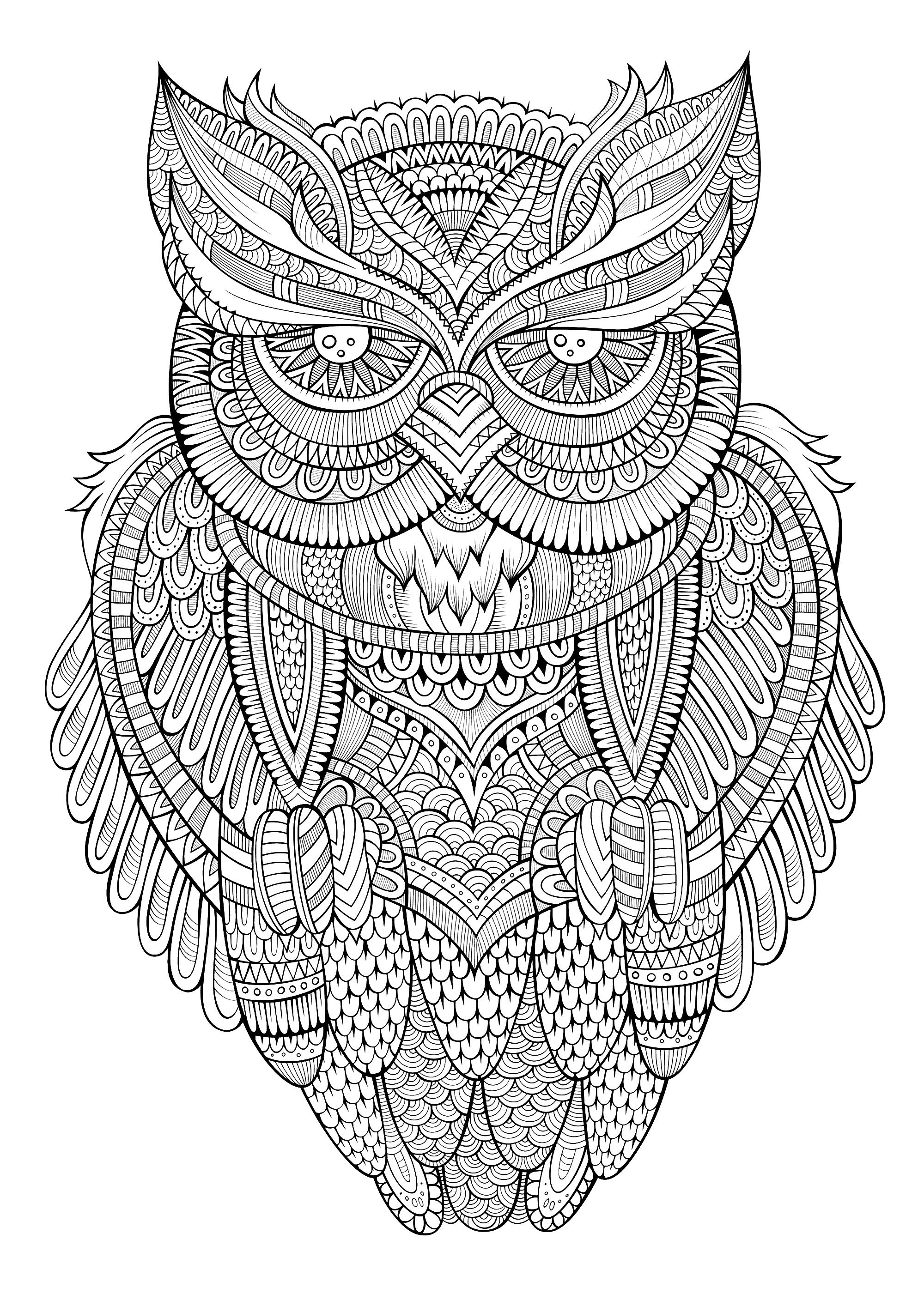 coloring pages for adults owls owl coloring pages for adults free detailed owl coloring owls for adults pages coloring
