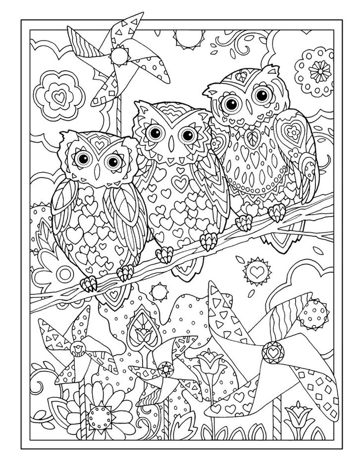 coloring pages for adults owls owl coloring pages for adults free detailed owl coloring owls for coloring pages adults
