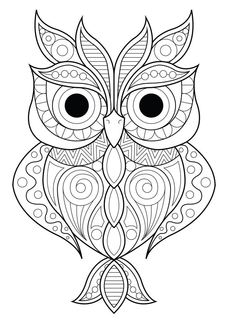 coloring pages for adults owls owl simple patterns 2 owls coloring pages for adults adults for pages owls coloring