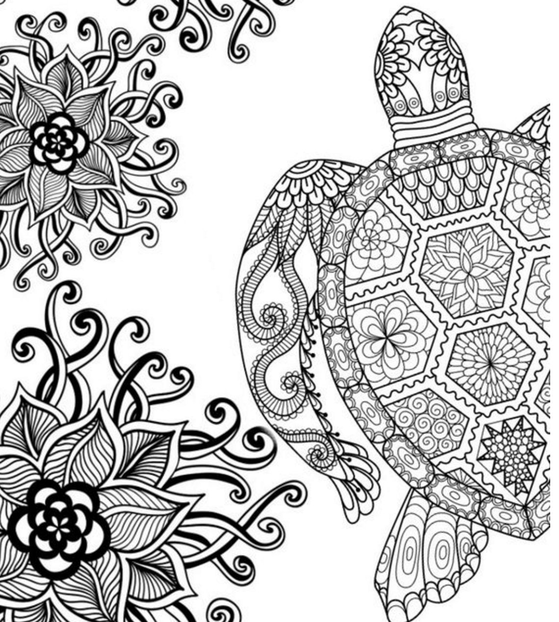 coloring pages for adults turtle hand drawn sea turtle for adult coloring pages stock pages coloring turtle for adults
