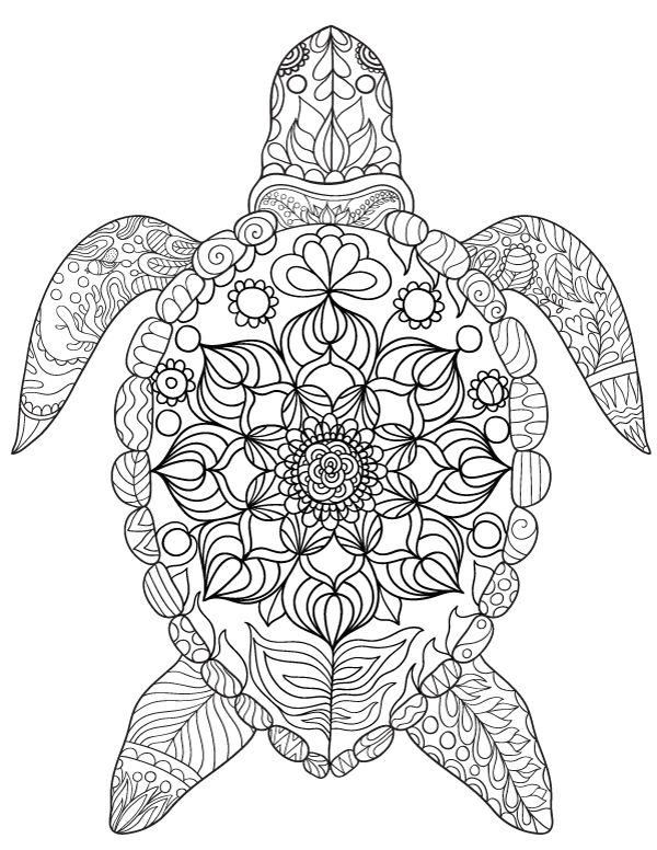 coloring pages for adults turtle turtle coloring pages for kids and adults 101 coloring adults coloring pages turtle for