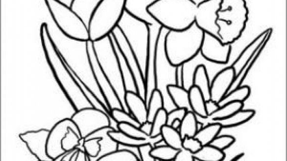 coloring pages for seniors coloring pages for seniors pages coloring for seniors