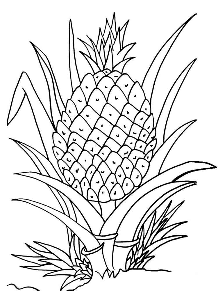 coloring pages fruit pineapple coloring pages download and print pineapple coloring fruit pages