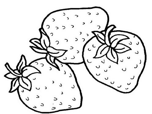 coloring pages fruit tropical fruits coloring pages ideas fantasy coloring pages fruit coloring pages