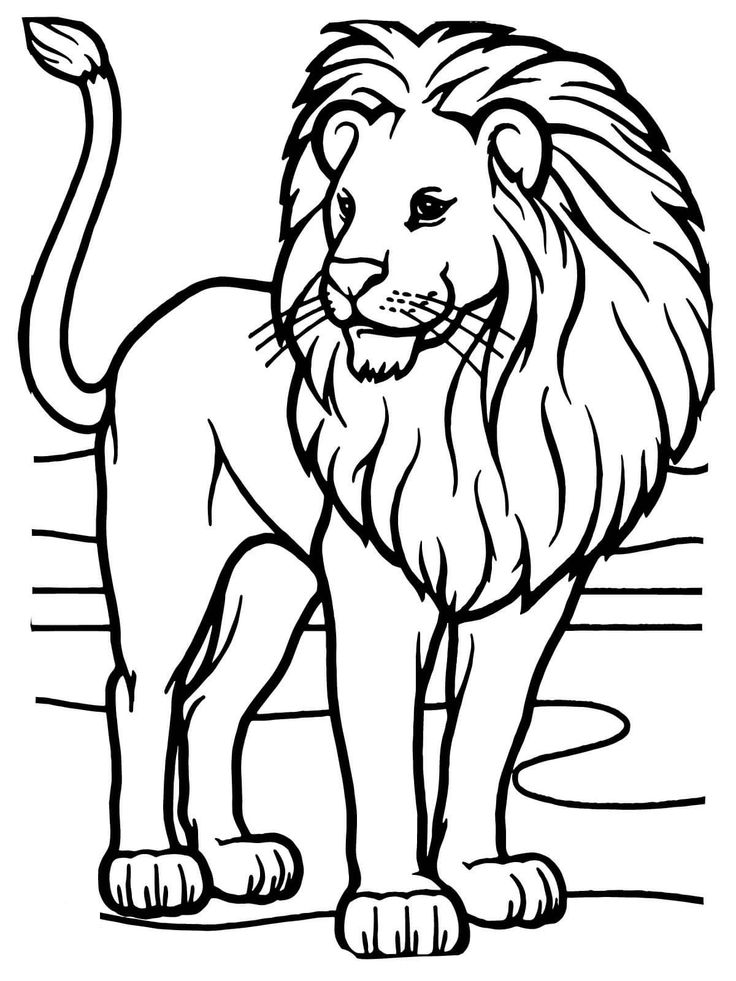 coloring pages of lion free easy to print lion coloring pages tulamama pages lion of coloring