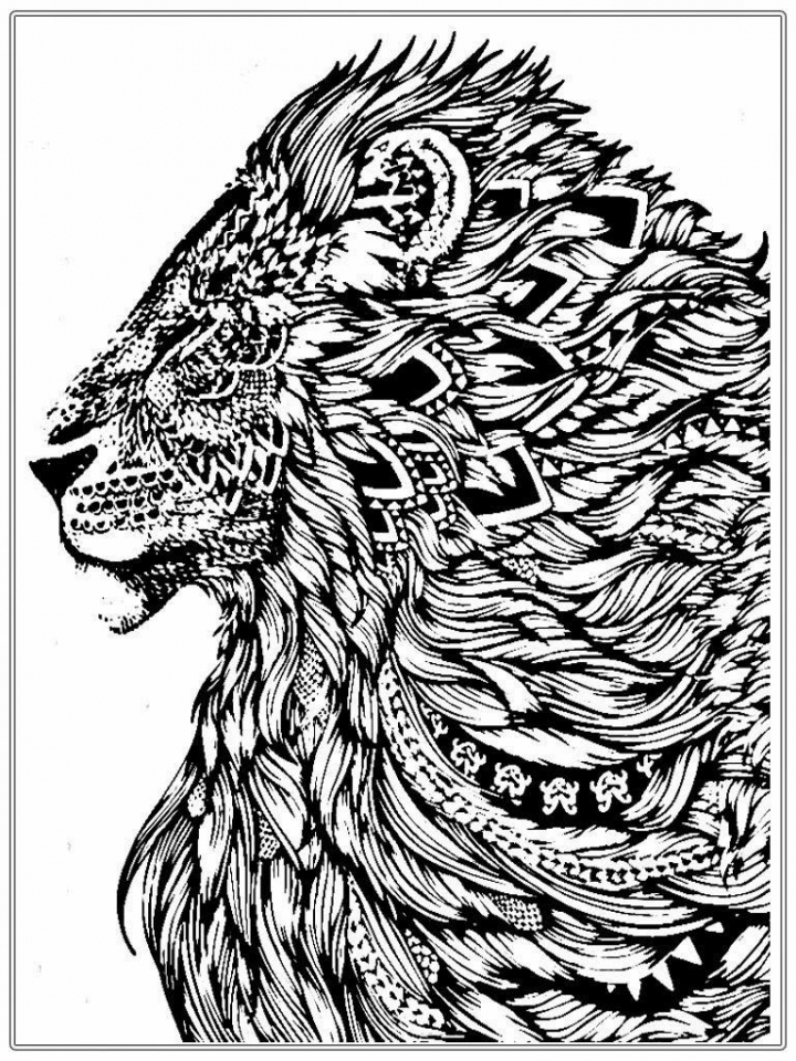 coloring pages of lion get this lion coloring pages for adults printable 64831 of coloring pages lion