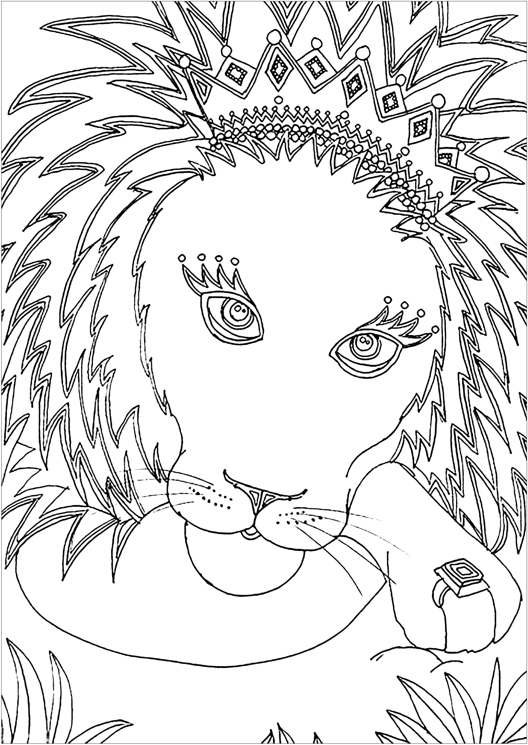 coloring pages of lion lion to color for children lion kids coloring pages lion of coloring pages