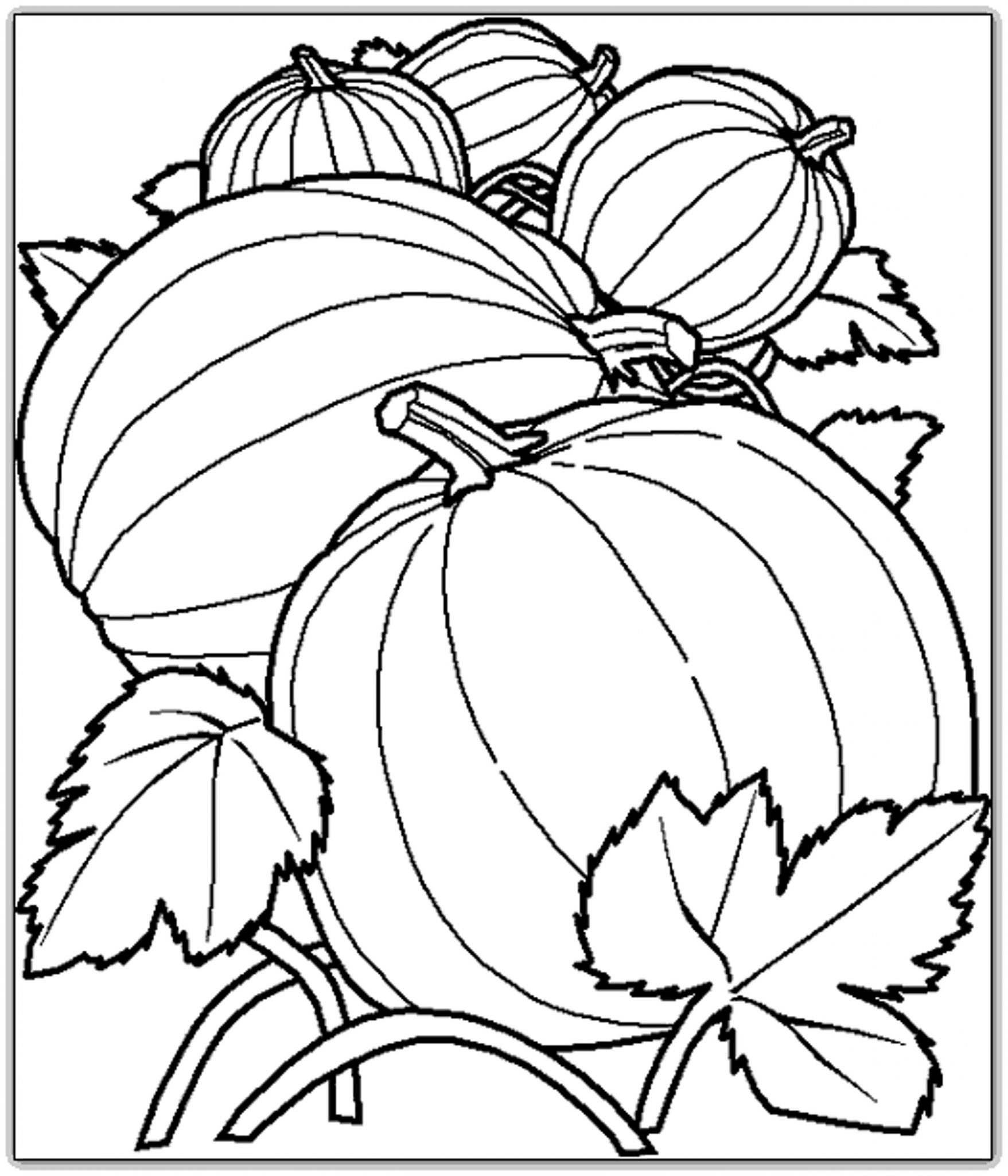 coloring pages of pumpkins creatively christy october 2012 coloring of pages pumpkins