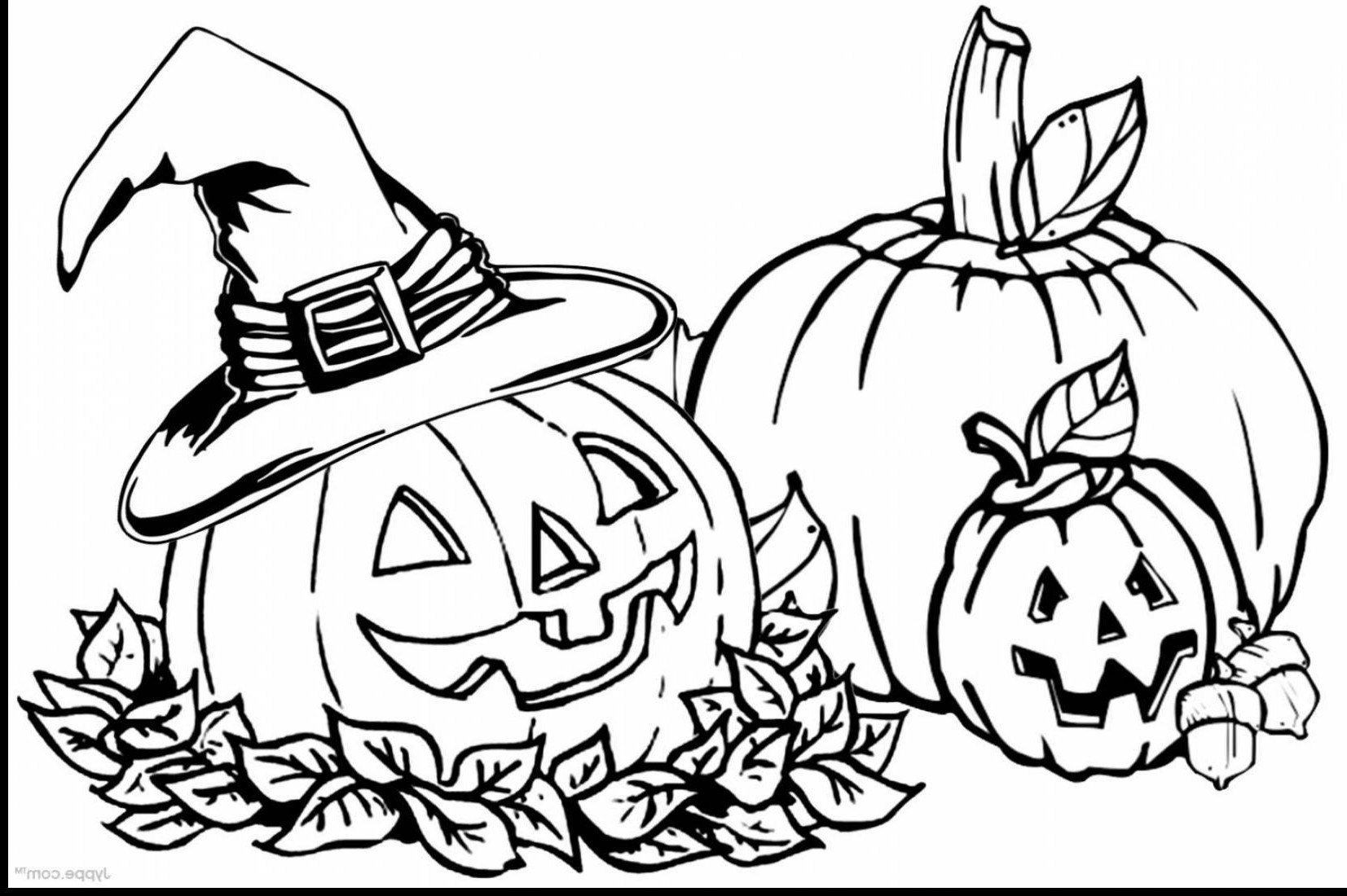 coloring pages of pumpkins pumpkin three happy pumpkin to color coloring pages of pumpkins coloring pages
