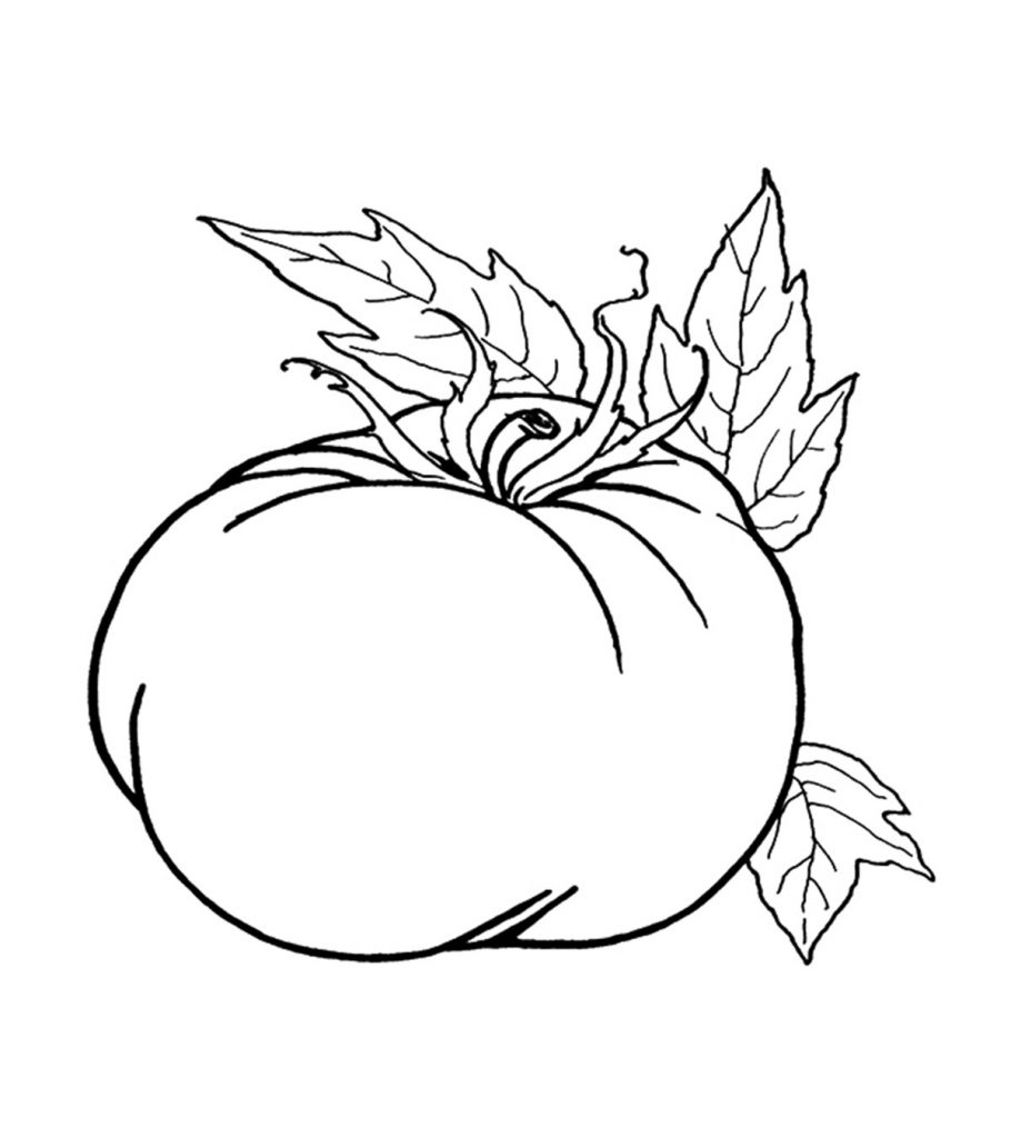 coloring pages of pumpkins top 24 free printable pumpkin coloring pages online coloring pumpkins of pages