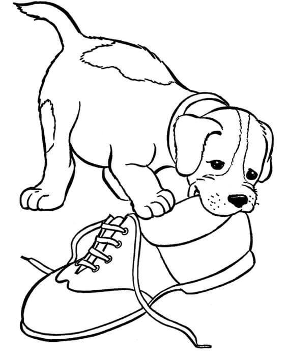 coloring pages to print dogs free printable puppies coloring pages for kids to pages print coloring dogs