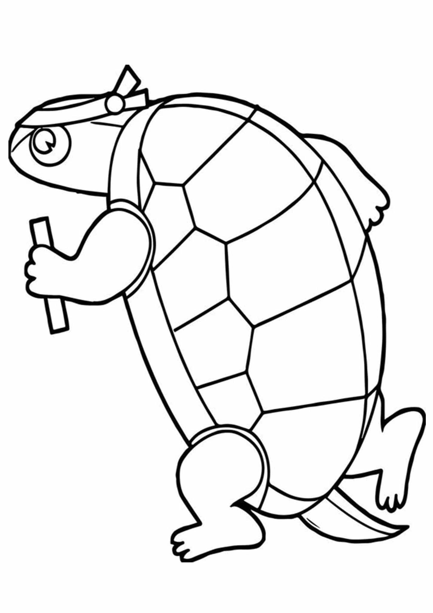 coloring pages turtle turtle coloring pages for kids and adults 101 coloring turtle coloring pages
