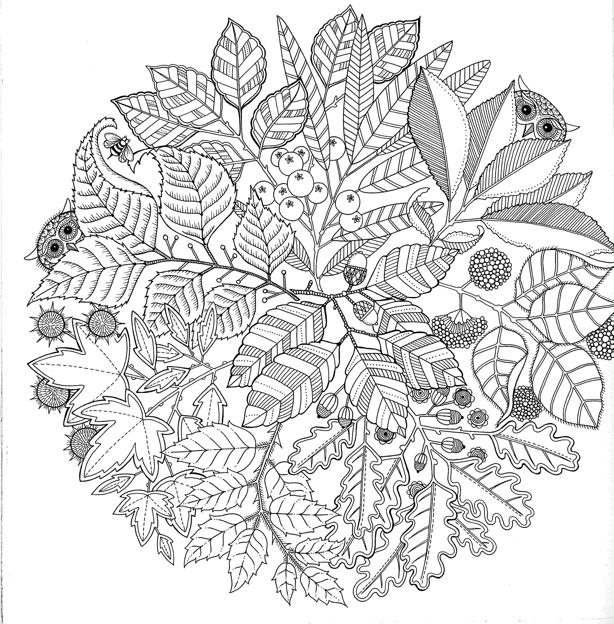 coloring papers free printable abstract coloring pages for adults coloring papers