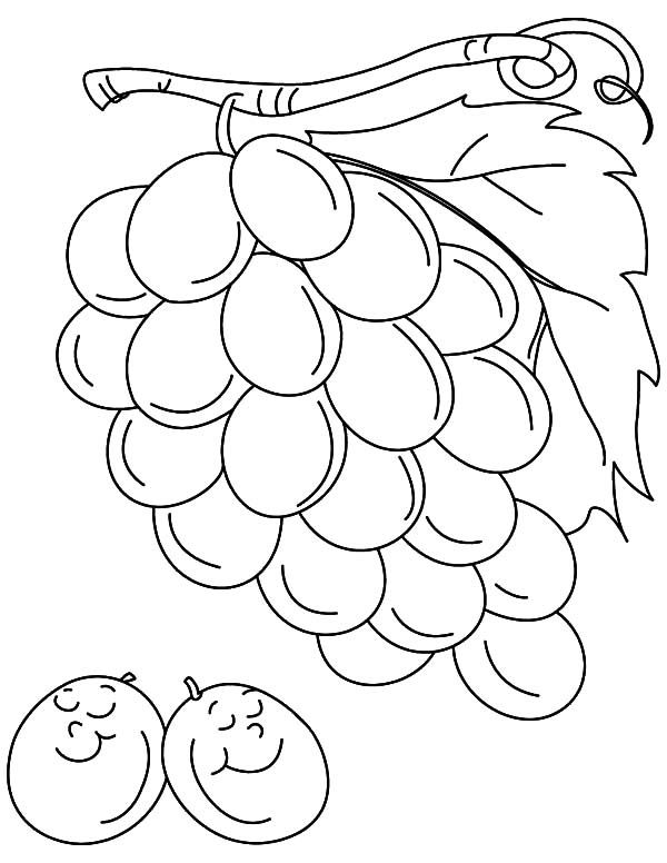 coloring picture of grapes grape coloring pages coloring pages to download and print grapes coloring picture of 1 1