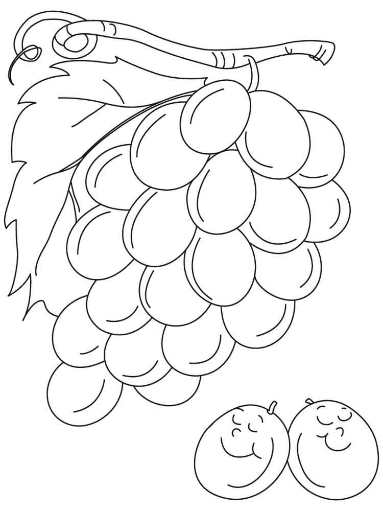 coloring picture of grapes grapes coloring pages best coloring pages for kids grapes picture of coloring