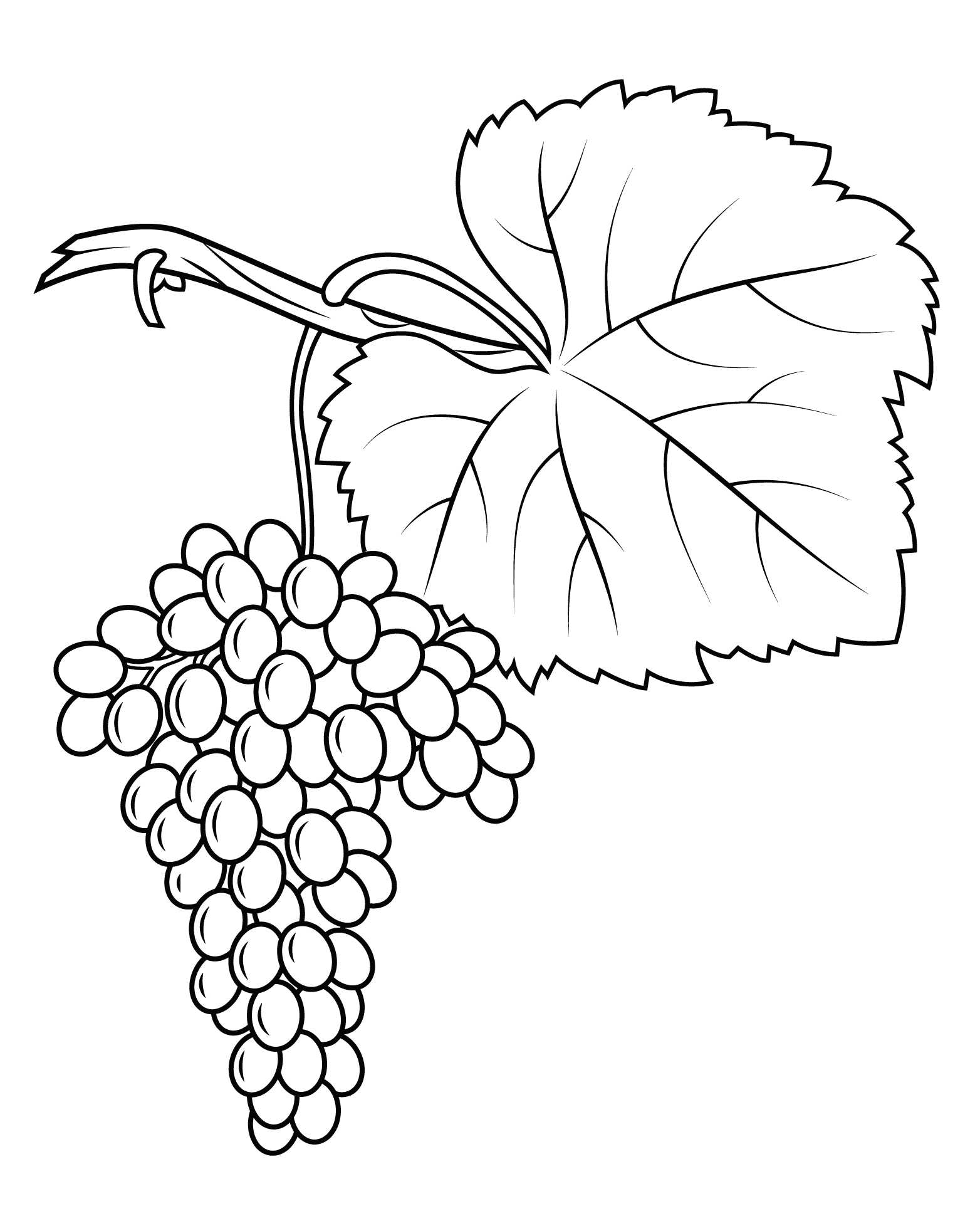 coloring picture of grapes top 25 free printable lovely grapes coloring pages online picture coloring grapes of