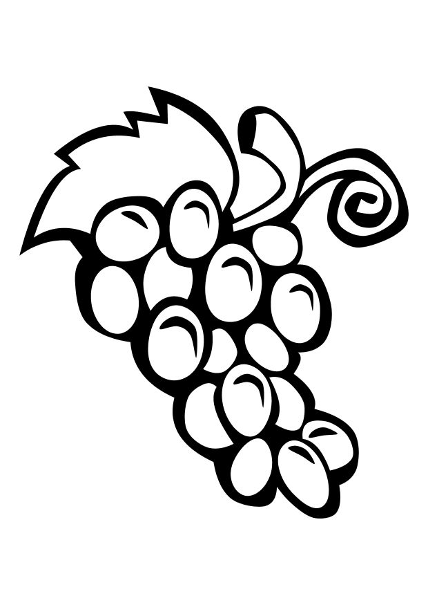 Coloring picture of grapes