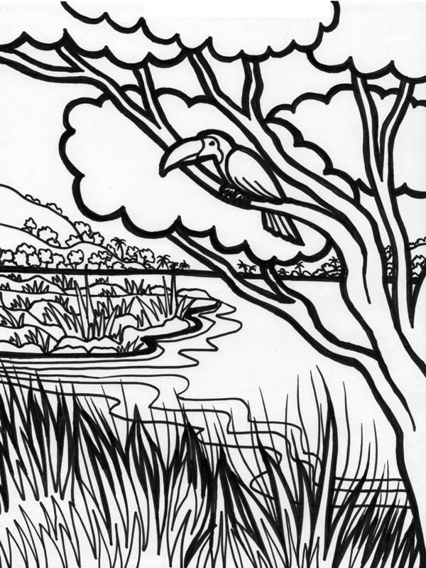 coloring picture river stream coloring pages river picture coloring