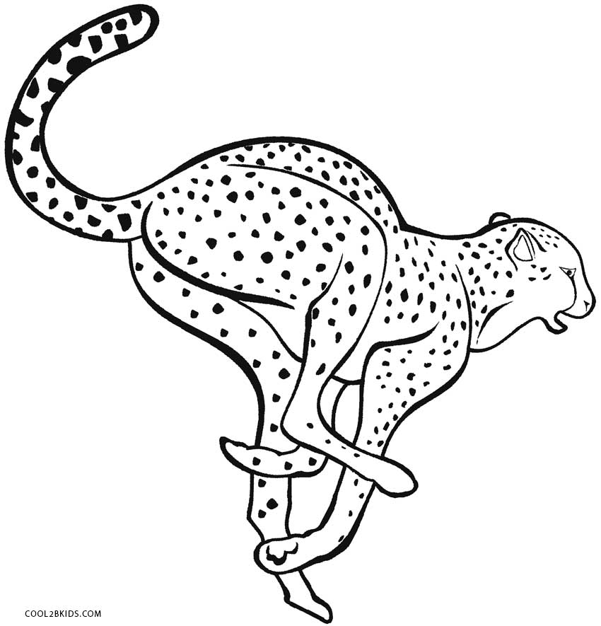 coloring pictures of cheetahs cheetah coloring pages the sun flower pages coloring cheetahs pictures of