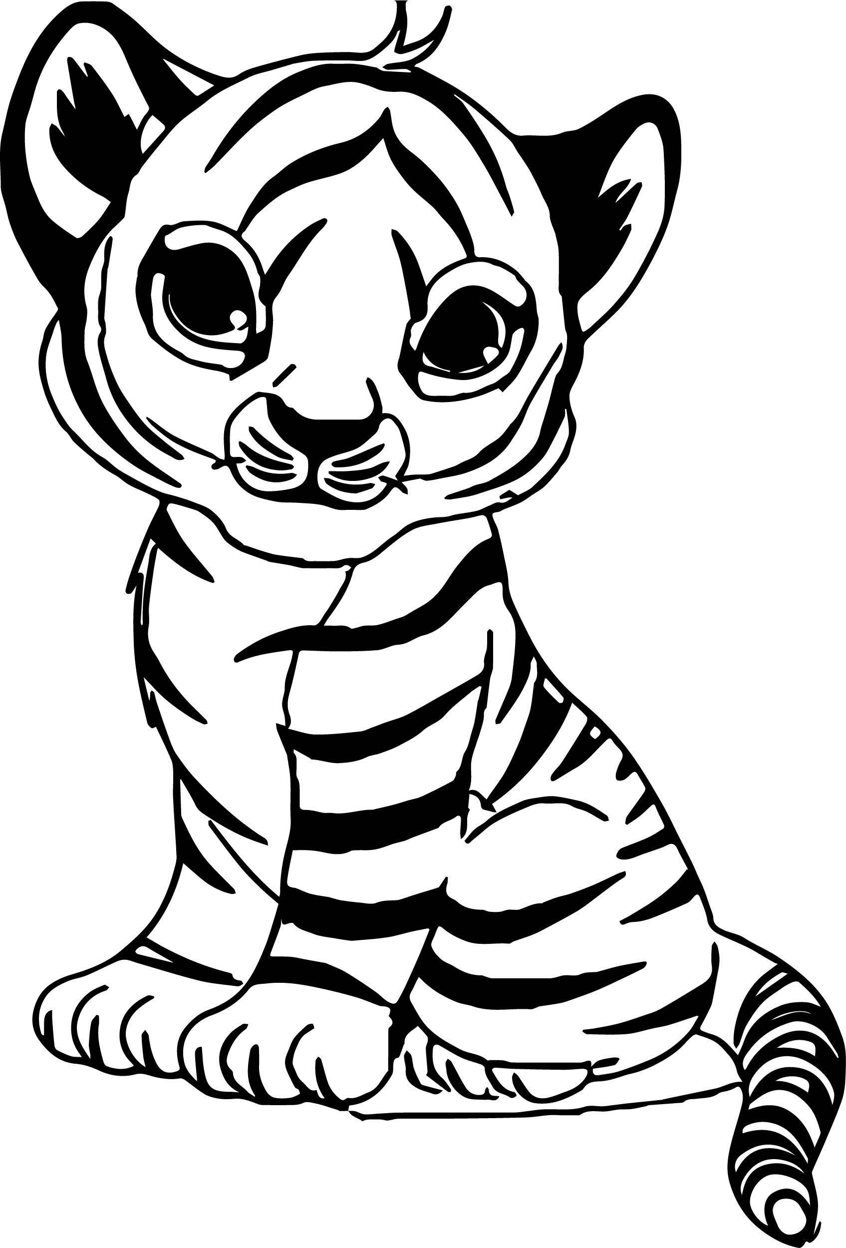 coloring pictures of tigers tiger coloring pages kidsuki coloring of pictures tigers