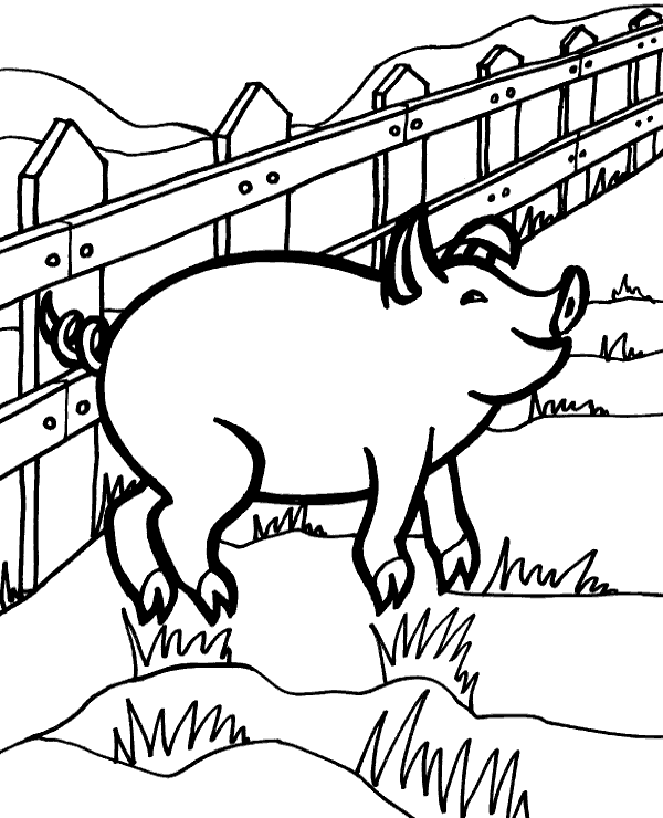 coloring pig for kids pig coloring page for kids topcoloringpagesnet pig for coloring kids