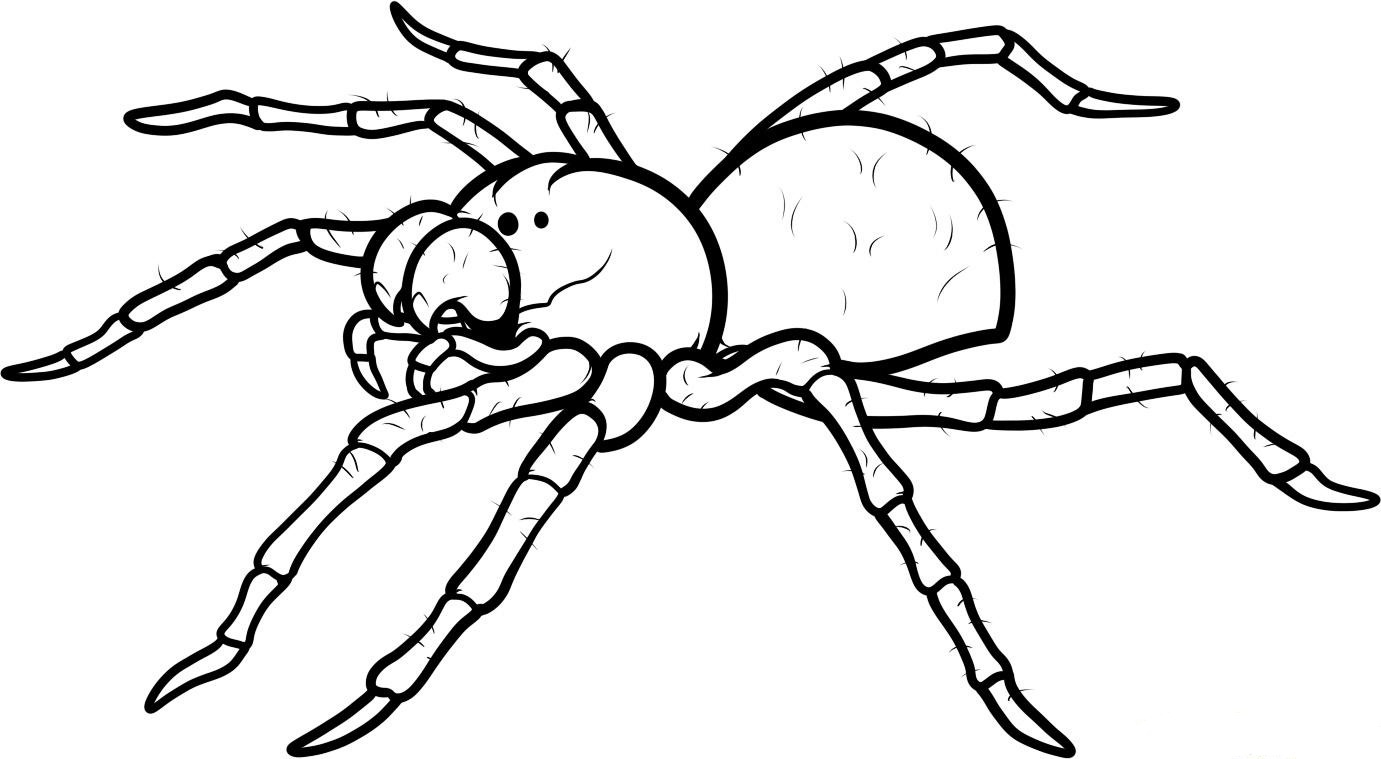 coloring printable spiders cartoon spider coloring pages at getdrawings free download spiders printable coloring