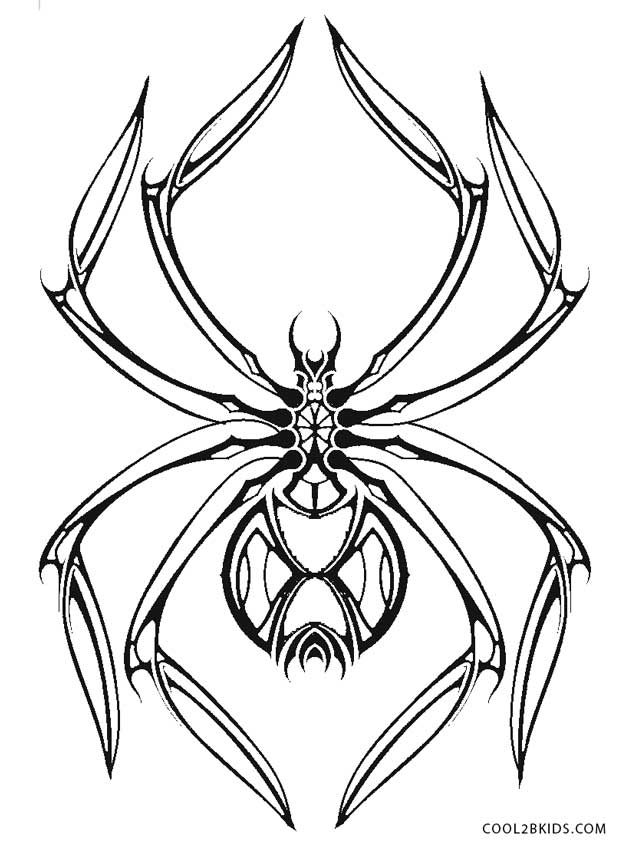 coloring printable spiders free printable spider coloring pages for kids cool2bkids printable spiders coloring