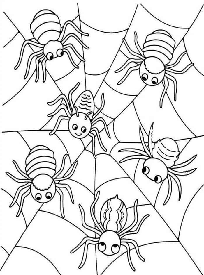 coloring printable spiders spider coloring page halloween coloring spiders printable