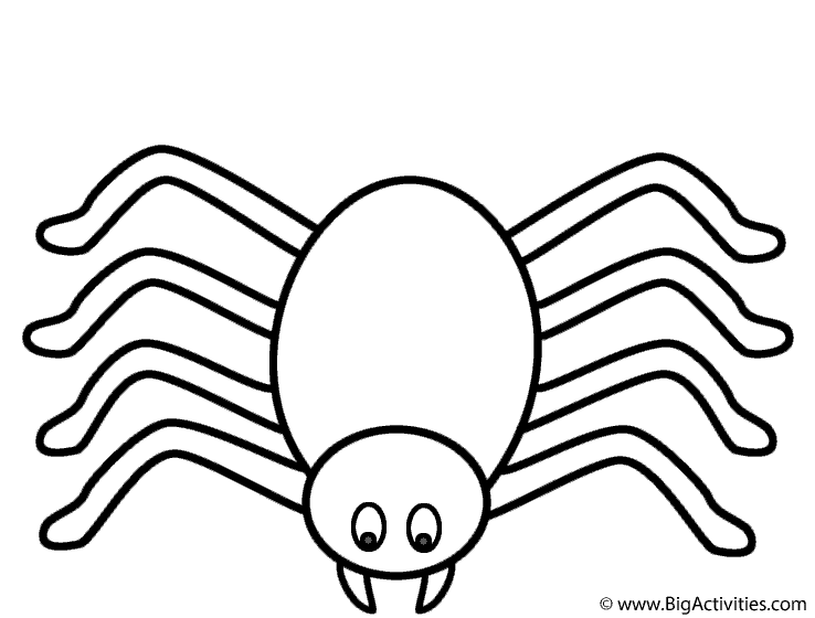 coloring printable spiders spider coloring page insects coloring spiders printable