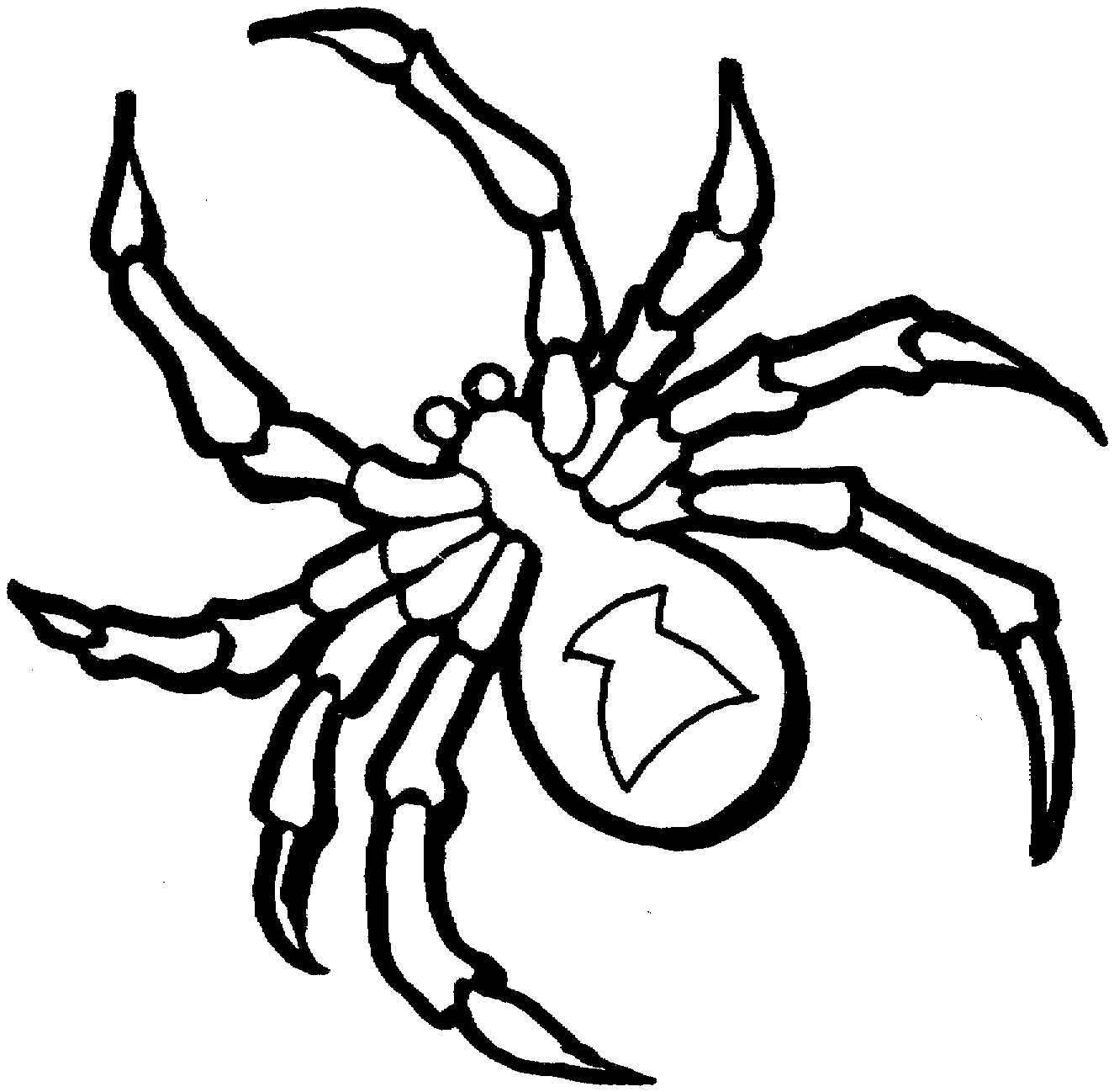 coloring printable spiders spider coloring pages kidsuki printable spiders coloring