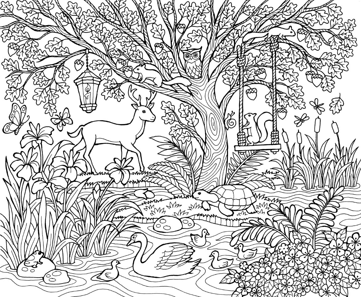 coloring scene set of 4 assorted nature scenes coloring by triciagriffitharts coloring scene