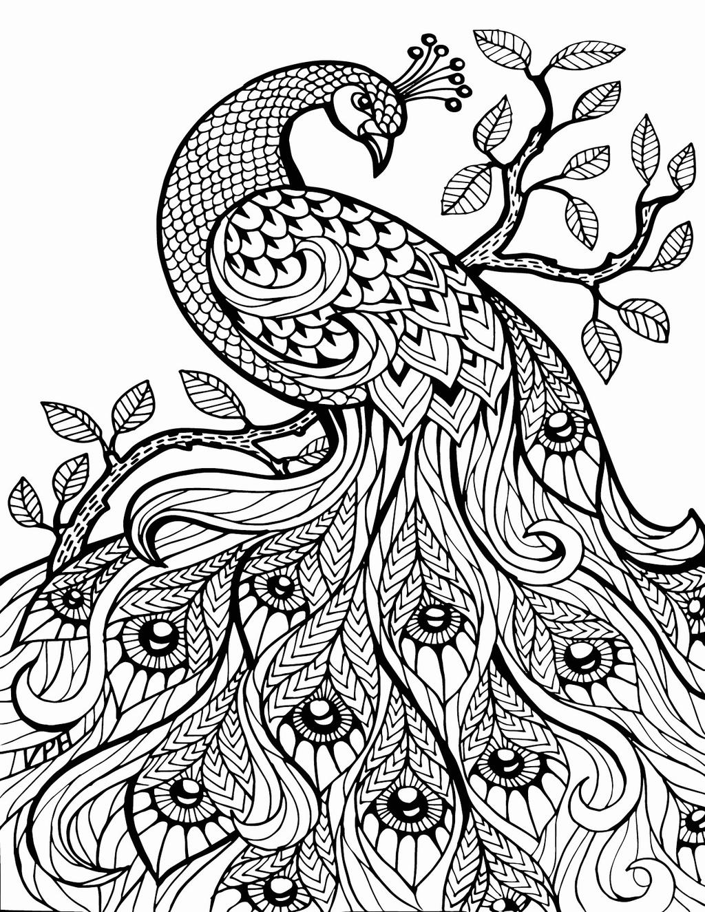 coloring sheets aesthetic peacock aesthetic coloring pages free printable coloring aesthetic coloring sheets