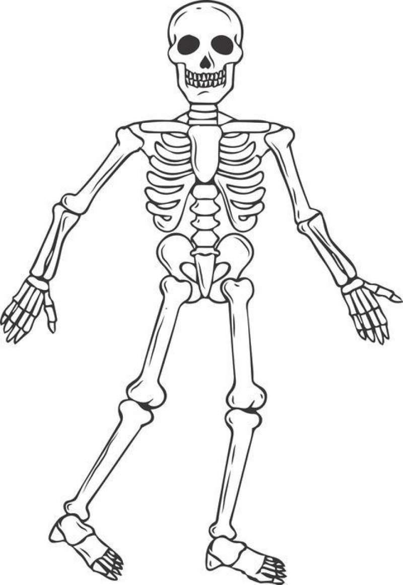 coloring skull bones coloring pages skull free printable coloring pages bones skull coloring