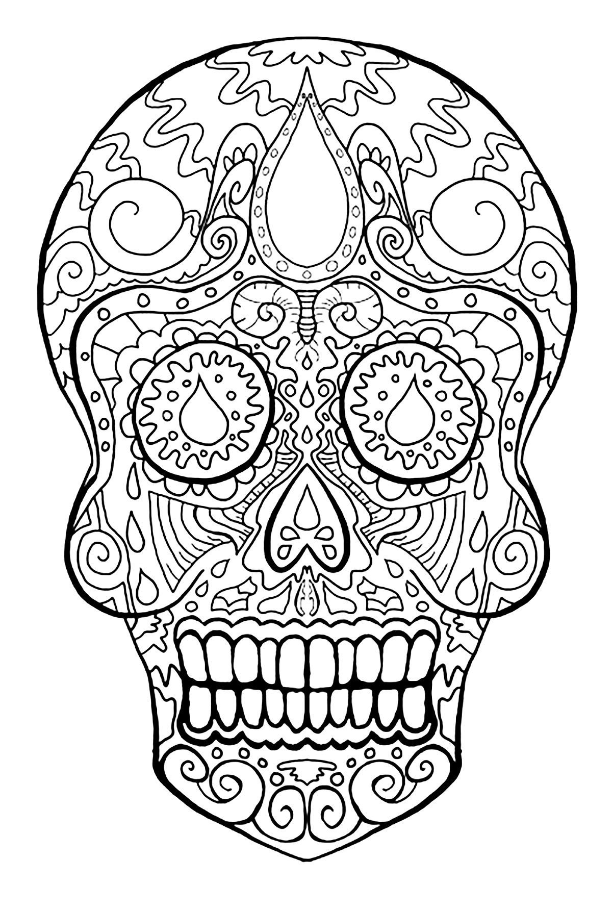 coloring skull bones coloring pages skull free printable coloring pages skull coloring bones
