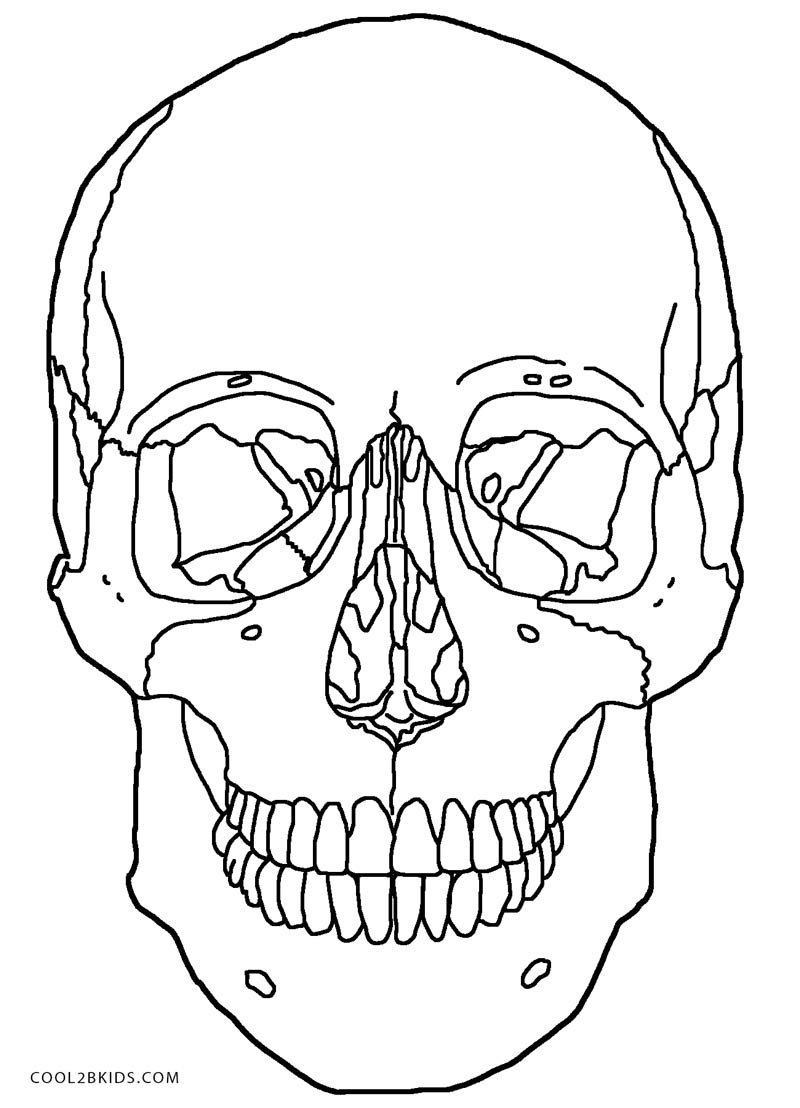 coloring skull bones easy skeleton coloring pages skull bones coloring