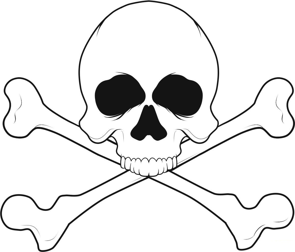 coloring skull bones skeleton head coloring pages at getcoloringscom free bones skull coloring