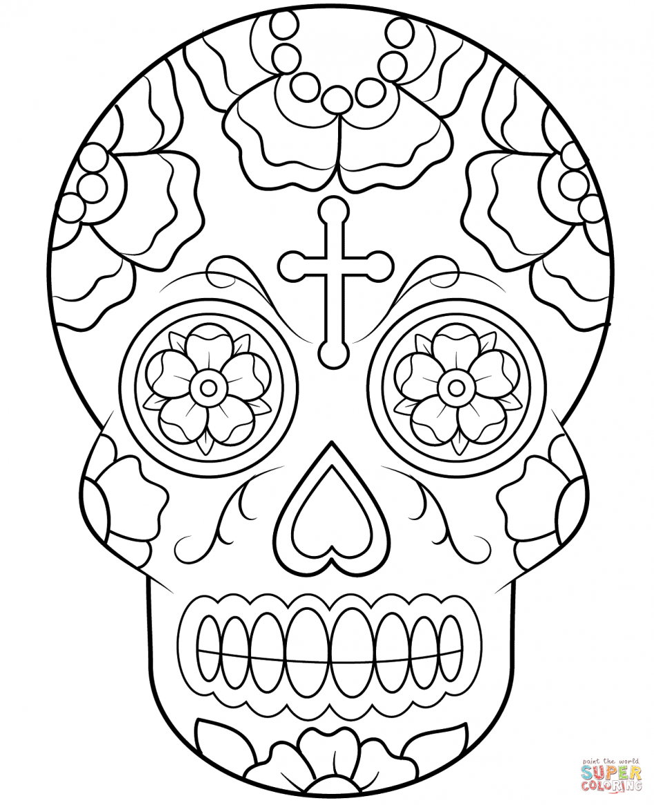coloring skull bones skull bones of the cranium and face coloring skull bones coloring