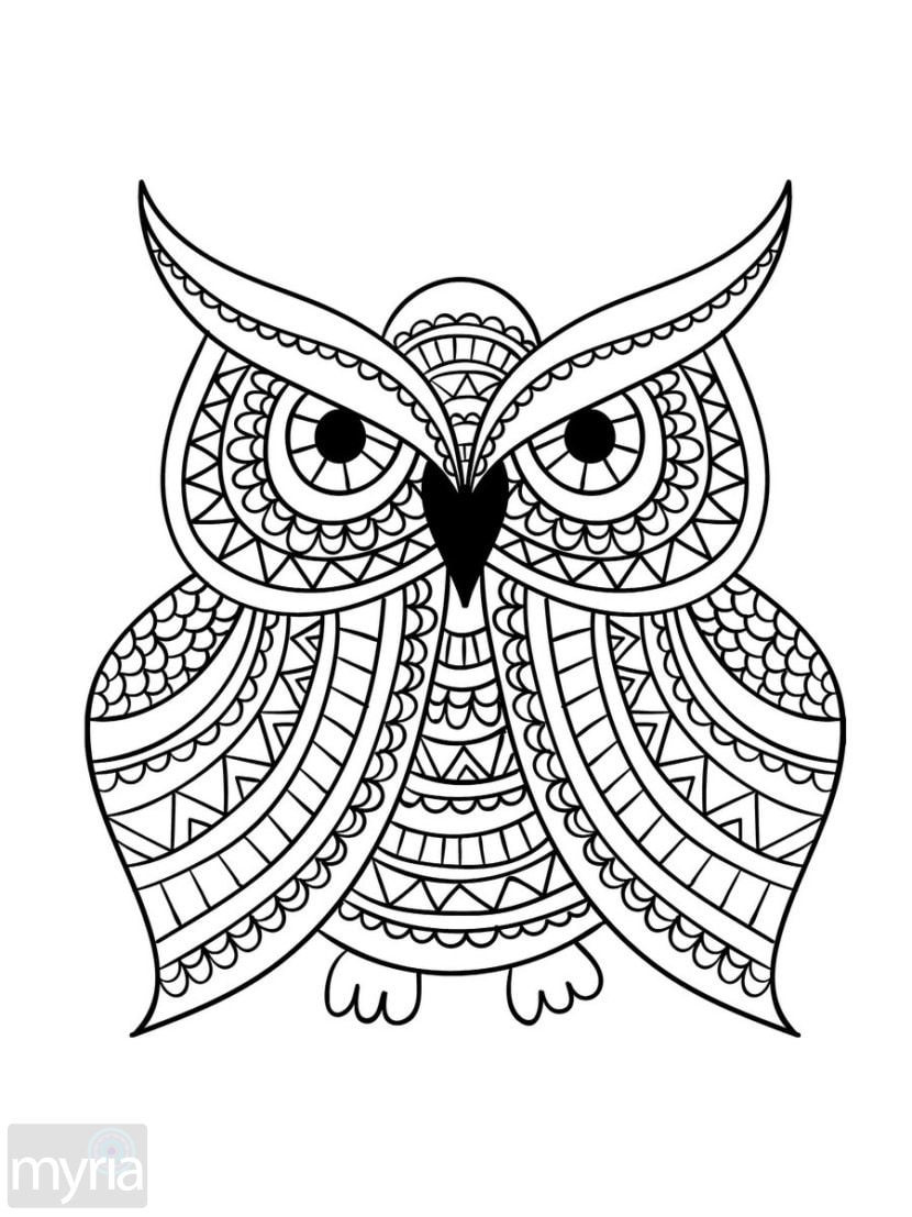 coloring techniques for adults large print adult coloring book 1 big beautiful techniques for coloring adults