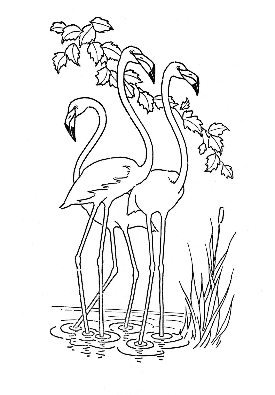 coloring the animal animal coloring pages 17 coloring kids the animal coloring