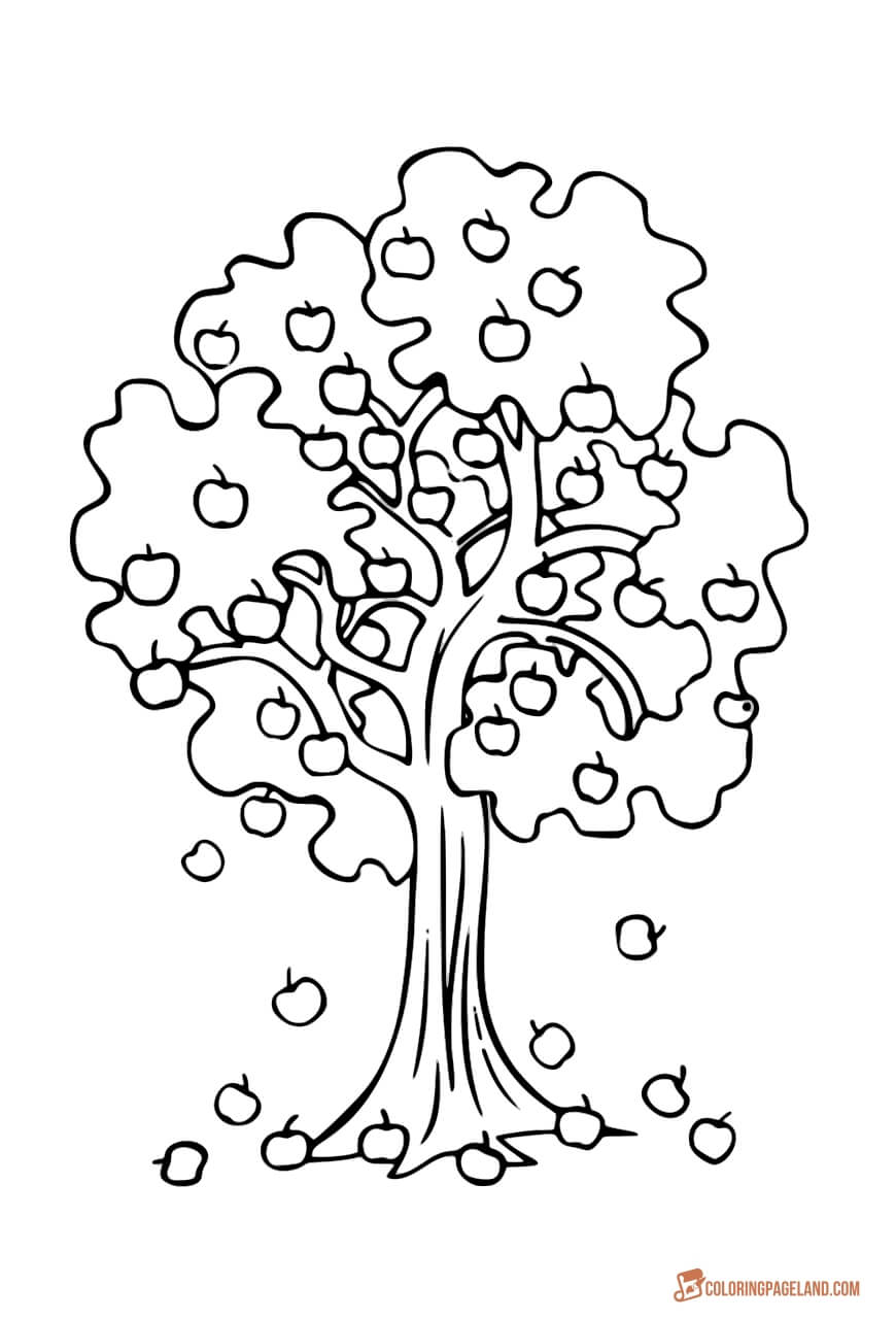 coloring tree pages apple tree coloring pages downloadable and printable coloring pages tree