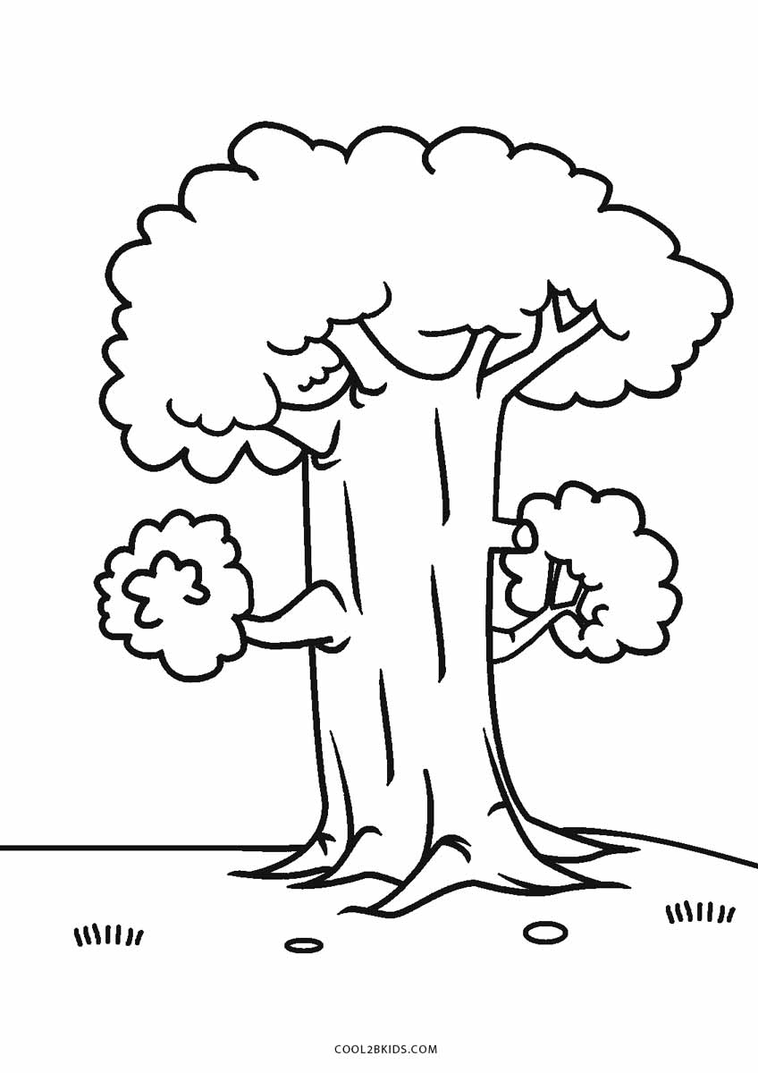 coloring tree pages free printable tree coloring pages for kids cool2bkids coloring pages tree 1 1