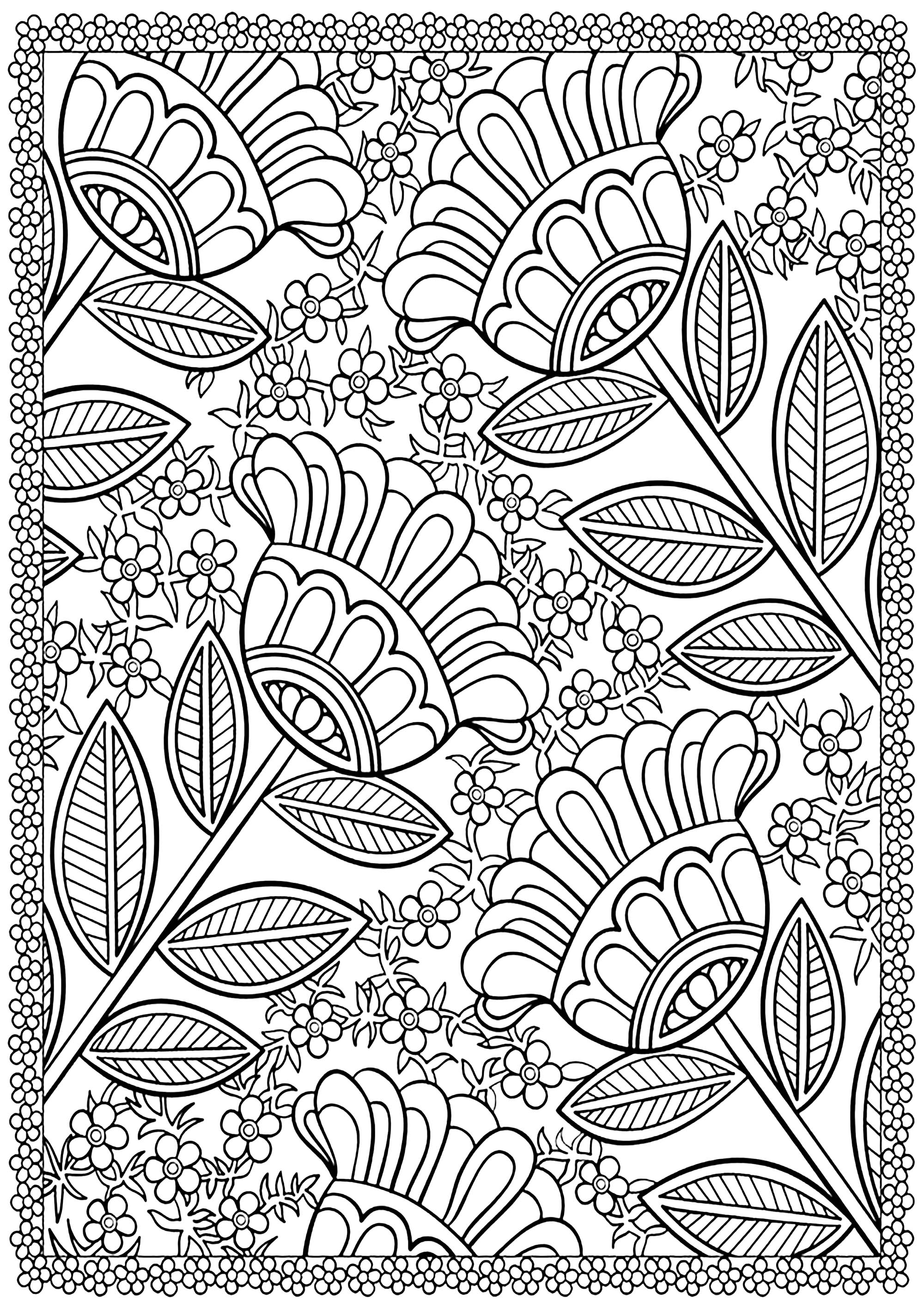coloring websites peacocks to print for free peacocks kids coloring pages websites coloring