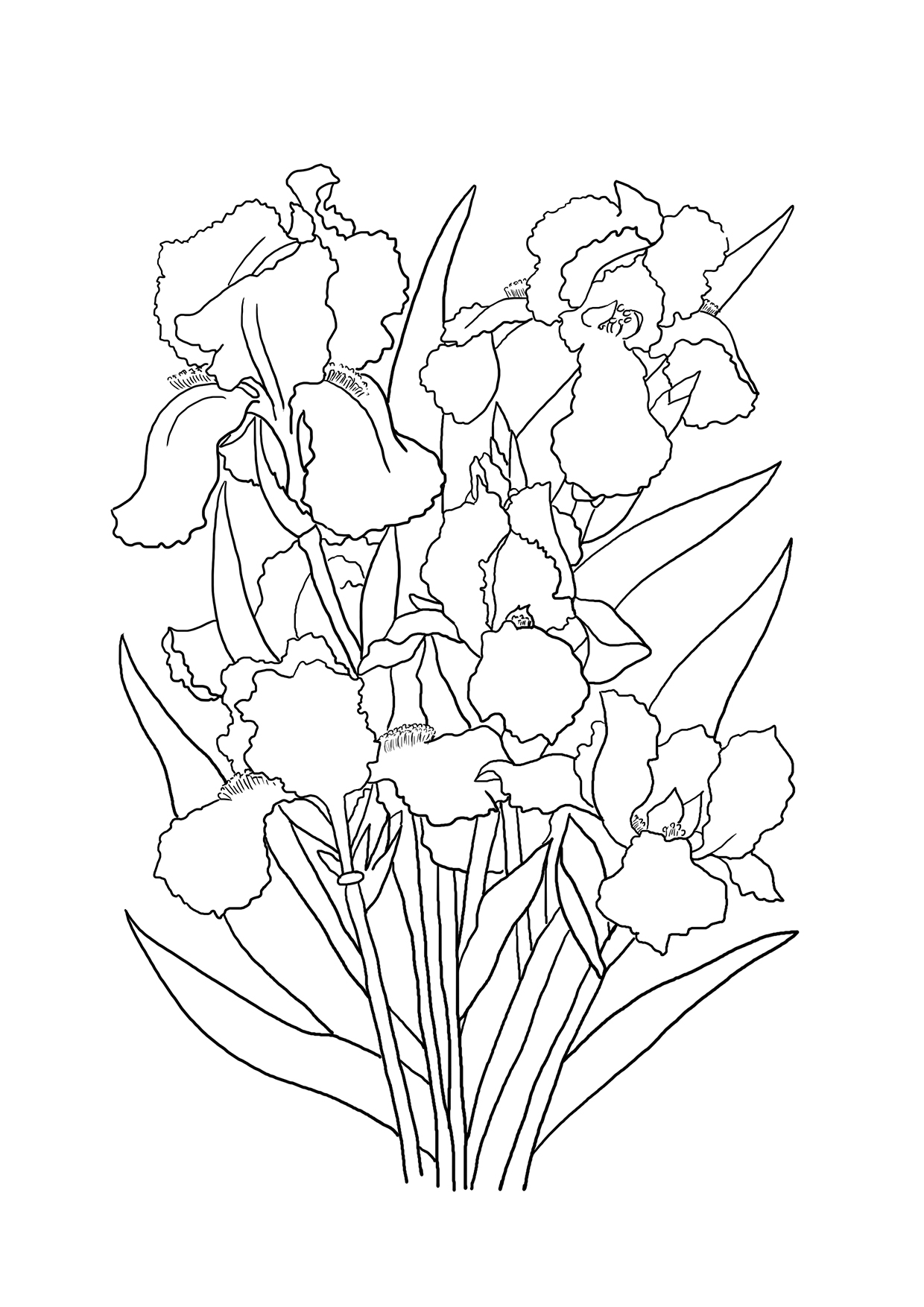 colouring page of flowers 10 flower coloring sheets for girls and boys all esl colouring of page flowers