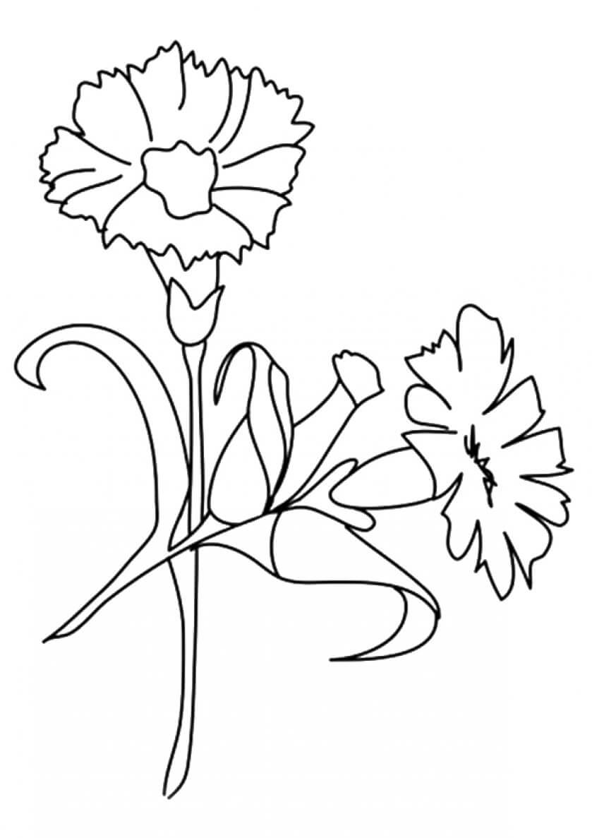colouring page of flowers flowers to download for free flowers kids coloring pages colouring page of flowers