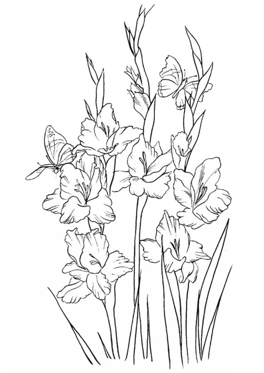 colouring page of flowers spring flowers coloring pages printable colouring of page flowers