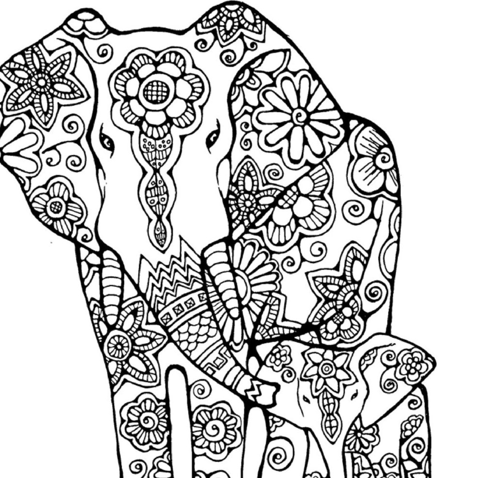 colouring pages of elephant free printable elephant coloring pages for kids pages elephant colouring of