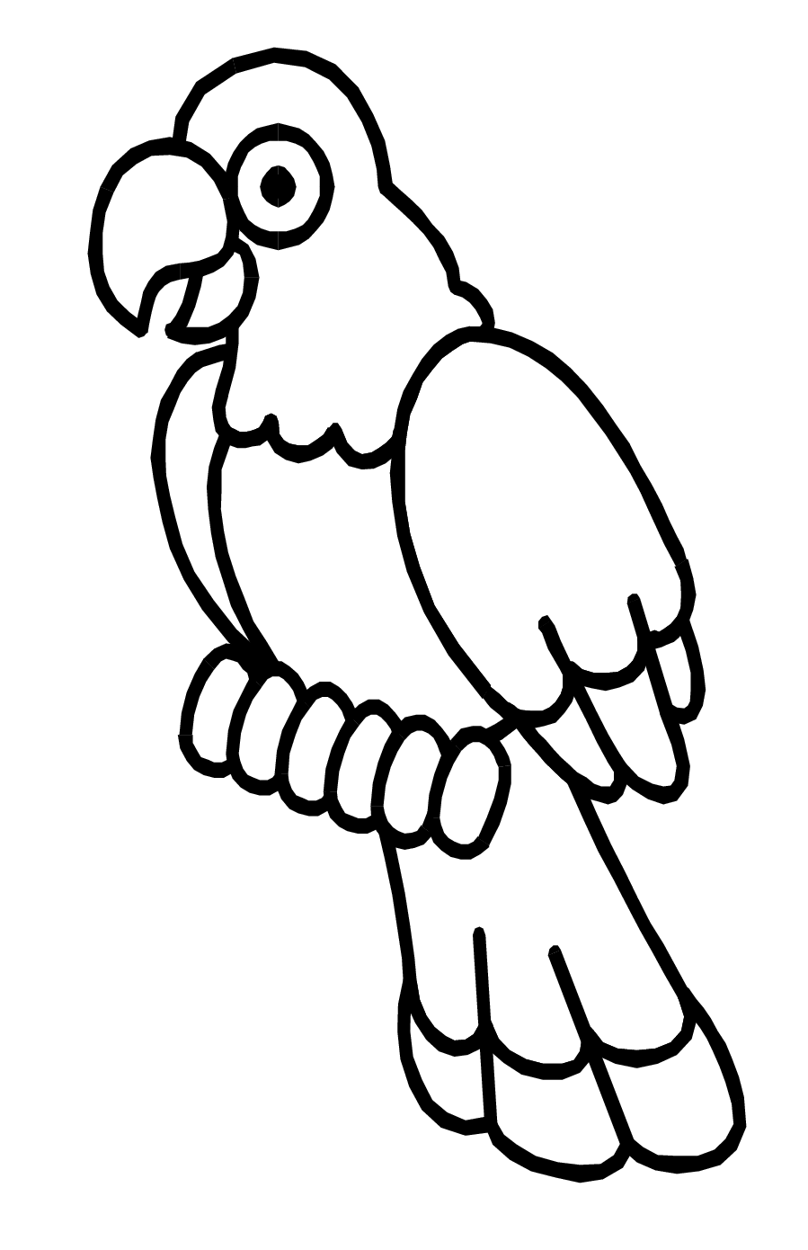 colouring picture of parrot free parrot and macaw coloring pages colouring picture parrot of